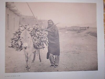 """Zuni Load of Fuel by Edward S. Curtis - Original 14 X 18"""" photogravure"""