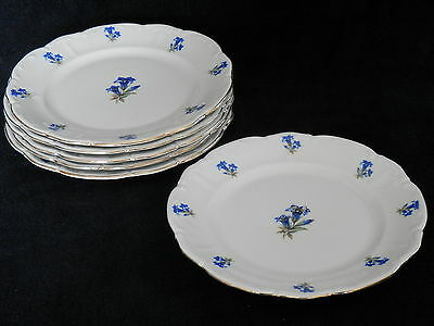 Bareuther Bavaria Germany US Zone Salad Plates Blue Flower Set of 6