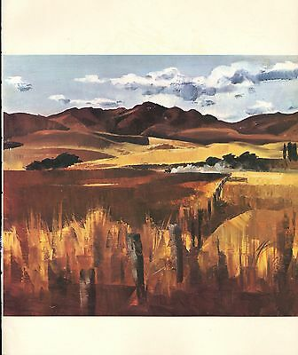 """1964 Vintage New Zealand Color Art Plate """"NORTH CANTERBURY"""" McIntyre Lithograph"""