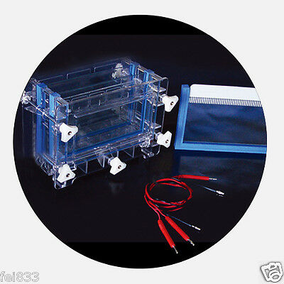 105 x 185 mm Lab Dual Vertical Gel Electrophoresis Cell System