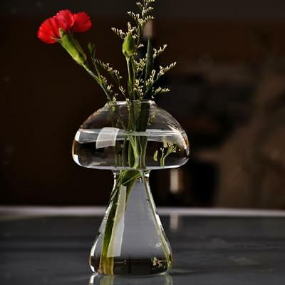 Clear Glass Flower Plant Vase Terrarium Container Home Garden Mushroom Decor