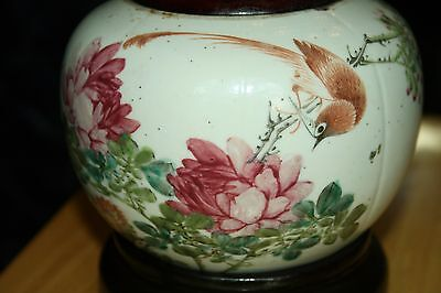 Antique Porcelain Jar from the Ching Dynasty white background -1800-1849