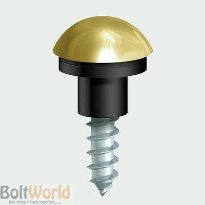 Polished Brass Finish Cap Mirror Screws With Black Grommets & Dome Caps