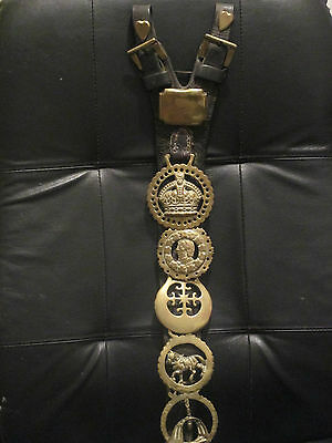 Antique Martingale with Eight Horse Brasses, Two Heart studs and One Square Stud