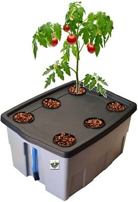 DWC Hydroponic Grow Kit System, #12 by H2OToGro