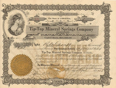 Tip-Top Mineral Springs Co.   1913 Tip Top, Virginia old stock certificate share