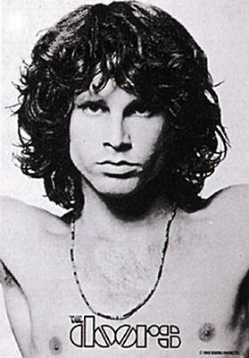 THE DOORS - MORRISON OPEN ARMS - FABRIC POSTER - 30x40 WALL HANGING 51019