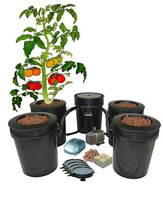 (4) 5 Gallon Hydroponic BUCKET, Recirculating DWC System FREE SHIPPING H2OtoGro