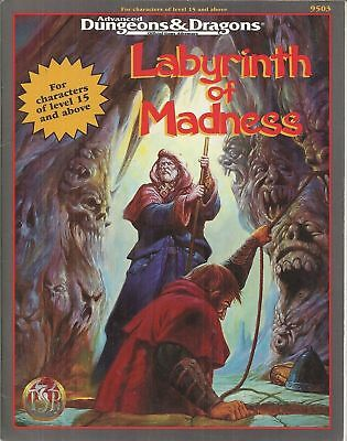 Dungeons & Dragons LABYRINTH OF MADNESS 9503 manuale in americano