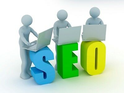 will do 30 Days Professional SEO For You