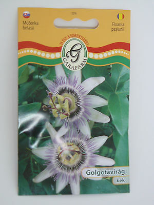 """Passion Flower """"Purple"""" Seeds GMO FREE!! Approx. 20 Seeds"""