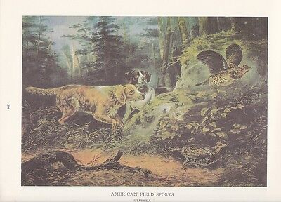 """1974 Vintage Currier & Ives HUNTING """"FOWL FLUSHED BY THE DOGS"""" COLOR Lithograph"""
