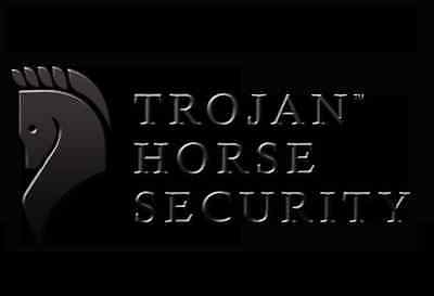 SMALL BUSINESS CYBER SECURITY ANALYSIS LEVEL 2   - Trojan Horse Security