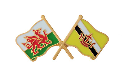 Brunei Flag & Wales Flag Friendship Courtesy Pin Badge - T1154
