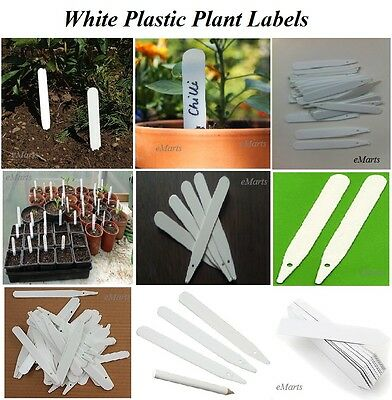 """40 x WHITE PLANT STICK LABELS SEED TRAY MARKERS STRONG 4.8"""" 12CM PLANT LABEL NEW"""