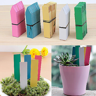 High New Long Plastic Plant Seed Labels Pot Marker Nursery Garden Stake Tags