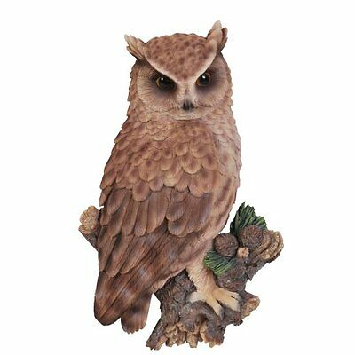 NEW Long Eared Owl Wall Plaque - Vivid Arts WP-LEAR-D