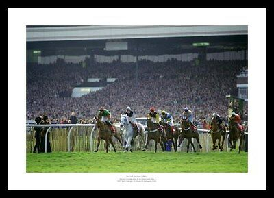 Desert Orchid Last Race 1991 Horse Racing Photo Memorabilia (043)