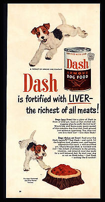"Original 1950 ""dash Dog Food"" Vintage Wired Haired Terriers Advertising Print Ad"