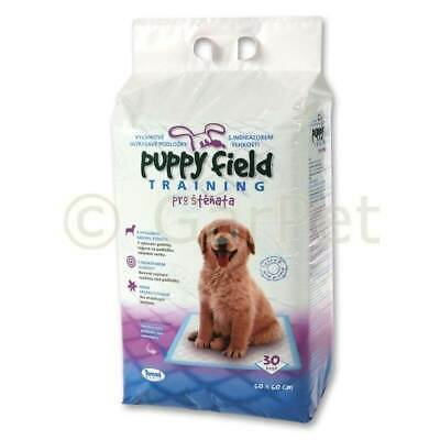 Puppy Field Training Hunde Welpen Klo Toilette Trainer WC Pads 60 x 60 cm