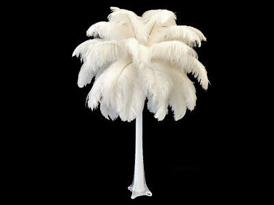 "200 Feathers - 9-13"" Off White Ostrich Drab Wholesale Bulk Centerpiece Costume"
