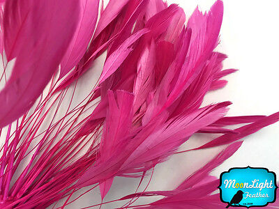 1 Dozen TAUPE Stripped Rooster Coque Tail Feathers Craft Party Supplier