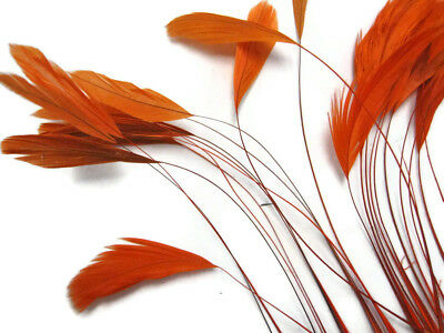 1 Dozen Orange Chinchilla Stripped Rooster Coque Tail Feathers Supply Costume