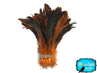 NATURAL BROWN Half Bronze Coque Tail Strung Feathers 2.5 Inch Strip