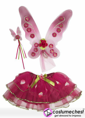 Sugar Plum Fairy Wings Set by Travis Dress Up By Design