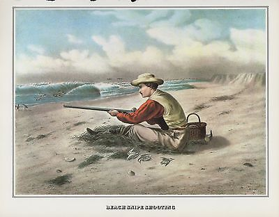 """1978 Vintage """"BEACH SNIPE SHOOTING"""" HUNTING CURRIER & IVES COLOR Art Lithograph"""