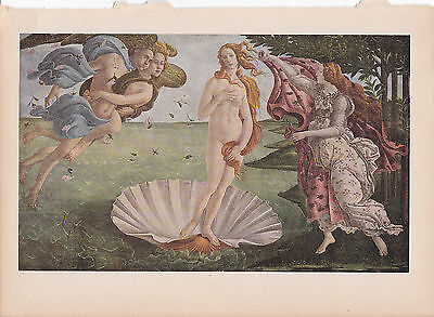 """1939 Vintage """"THE BIRTH OF VENUS"""" by BOTICELLI Color Art Plate Lithograph"""