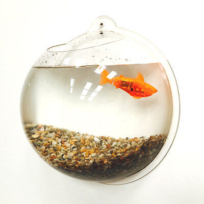 Wall Hanging Mounted Fish Bowl - Includes 500g of Natural Gravel - 6.7 Litre