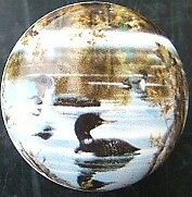 Cabinet Knobs Knob w/ Loon #6 Loons @Pretty@ bird
