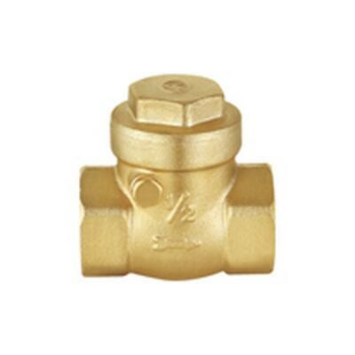"SWING CHECK  VALVE   25mm 1""  FI* FI BSP Brass Flap SCV25"