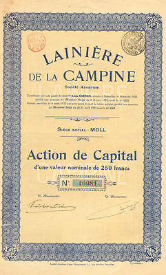 Campine Wool Company   1925 Moll France certificate stock
