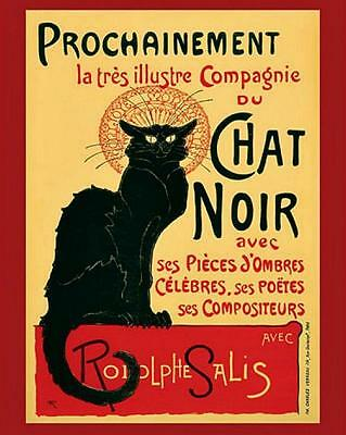 Chat Noir - Mini Poster 40cm x 50cm new and sealed