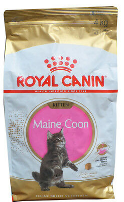 10kg Royal Canin Maine Coon Kitten Gatto