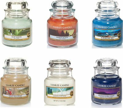 Yankee Candle Small Jar Fresh Collection - Choose Your Fragrance