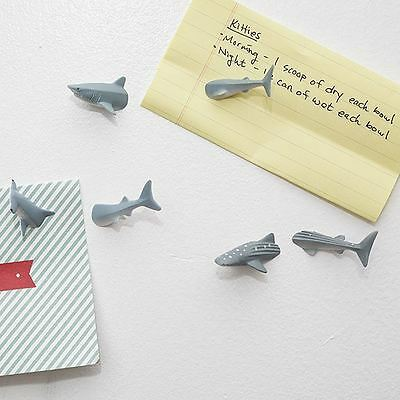 Kikkerland Shark Whale Hammerhead Butt Fridge Magnets