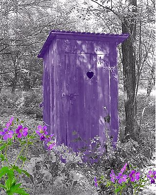 Purple & Gray Home Decor Wall Art Photo Print Vintage Outhouse Bathroom Picture