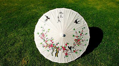 Paper Parasol. Paper Umbrella. Pink Cherry Blossoms. Black Birds.