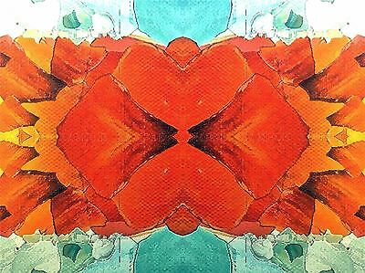 ABSTRACT PAINTING SYMMETRY PATTERN RED YELLOW POSTER ART PRINT PICTURE BB236B