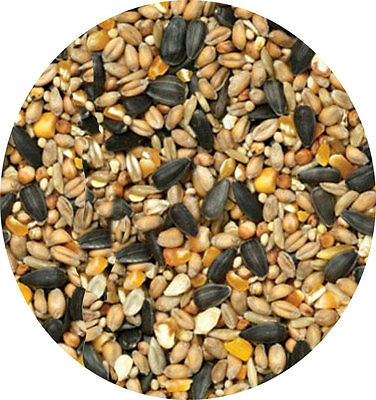 Garden Bird Seed 700g Wild Bird Food Bow Brand Great Mix Of Different Seeds Feed