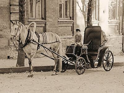 Vintage Photo Old Antique Horse Carriage Driver Trap Retro Poster Print Bmp10217