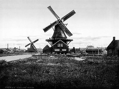 Dutch Windmills Holland 1905 Two Windmills In Netherlands Bw Poster 594Bwlv