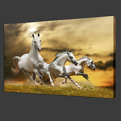 Home Decor Canvas Print Wall Pictures Modern Art Painting Animals White Horses