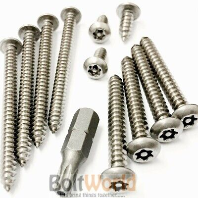 A2 Stainless Steel Torx Pin 6 Lobe Button Head Self Tapping Security Wood Screws