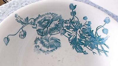 Burgess & Campbell Interntionl Porcelain Wash Basin Burgess  with BLUE POPPIES!