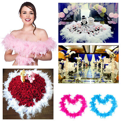 2M Feather Boa Hen Night Party Decor Fancy Dress Choose 11 Colour in Black.Pink