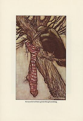 """1975 Vintage PETER PAN /""""THEY WERE OVERHEARD BY A FAIRY/"""" RACKHAM Color Lithograph"""